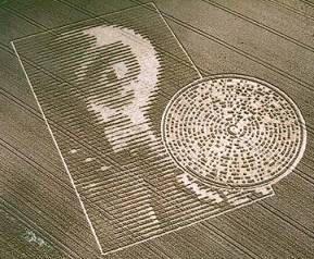 alien crop circle response - photo #19