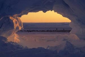 Warming in Antarctica