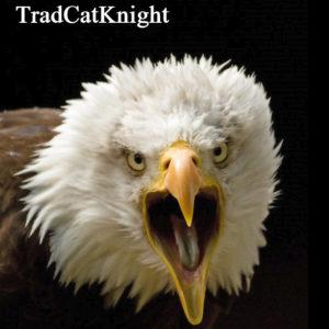 TradCatKnight