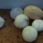 Egg Size Hail, Moldovia
