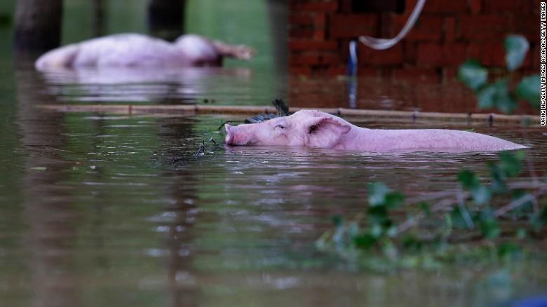 07-03-2016-china-flooding,NearWuhan,beforeNepartak